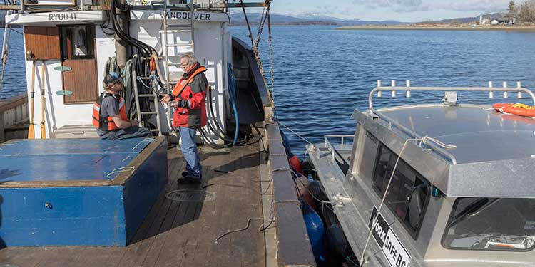 Amended regulations aimed at improving safety on commercial fishing vessels
