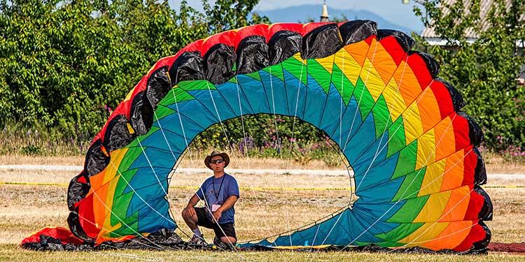 Go, fly a kite