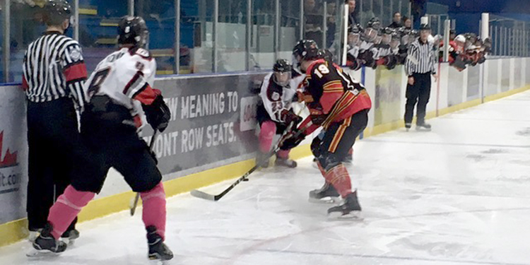 Sockeyes growing day by day