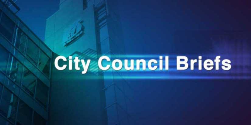City unveils new council voting system