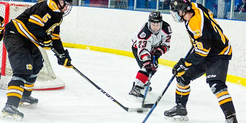 Sockeyes return to winning ways